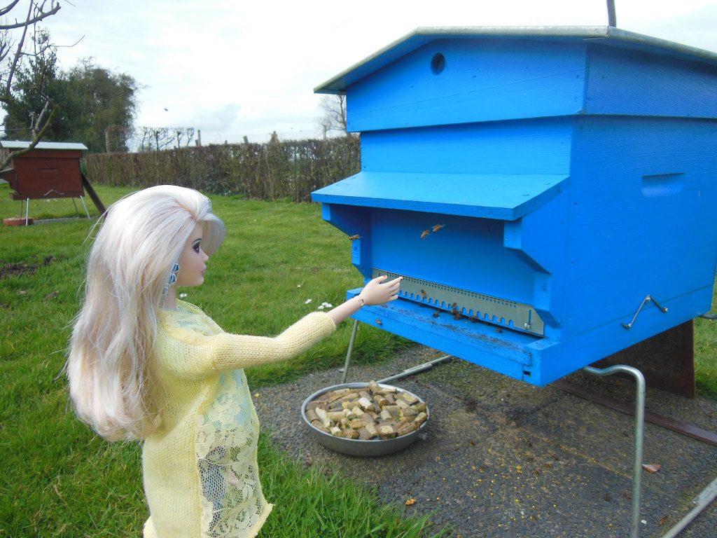 Cathy devant la ruche d'abeilles